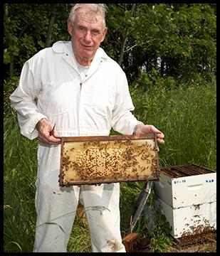 Ferme apicole Heavenly Honey