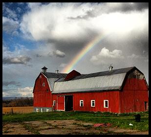 Maple Hill Urban Farm