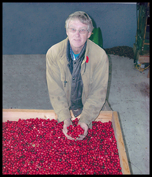 Upper Canada Cranberries