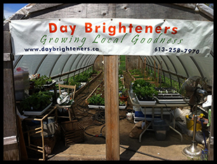 Ferme Day Brighteners
